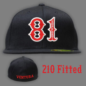 210 Fitted 81 Bold Ventura